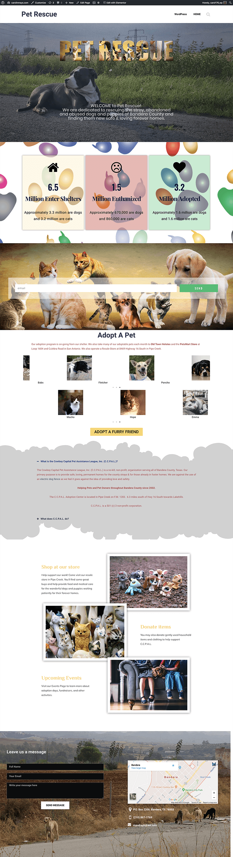 pet rescue site home page mockup